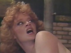 Lisa Deleeuw Final Anal Scene Vintage